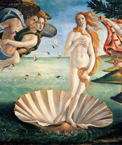 venus de milo breast shape